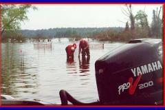 lake_conroe_aquatic_habitat_restoration