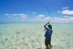saltwater_fishing_guides